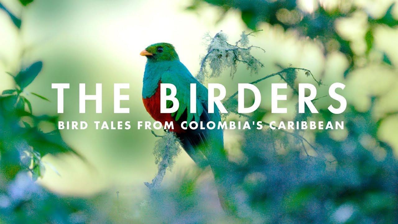 Посольство Колумбии пригласить вас на показ документального фильма