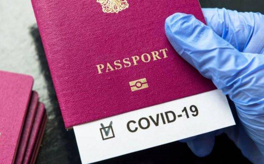 Паспорта вакцинации от COVID-19 появятся в ЕС через несколько месяцев