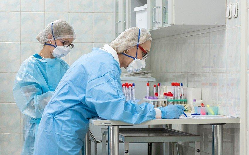 Ученый раскрыл мнение специалистов о происхождении коронавируса