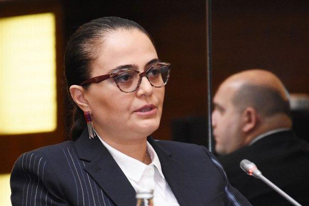 Səadət Yusifova: 2019-cu il Azərbaycanda köklü islahatar ili kimi yadda qalacaq